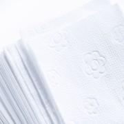 Papierhandtuch Falthandtuch 25x23cm 2-lagig Zick-Zack-Falz, hochweiß, 3000 Stk.