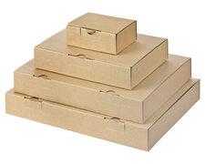 Maxibriefkarton und Warensendung Versandkarton, 235x155x46 für Din A5, braun